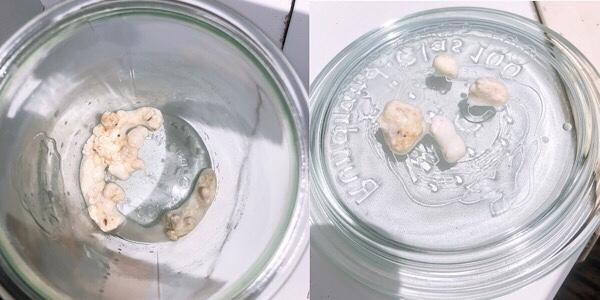 フランキンセンスの樹脂を使って化粧水を作る方法